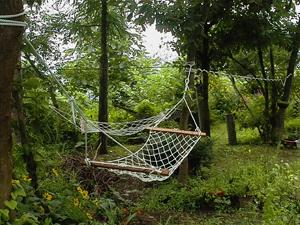 アウラの庭のハンモック