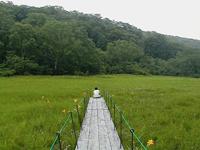 静かな湿原・北ドブ湿原