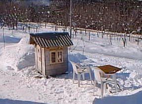冬の庭・子どもの家